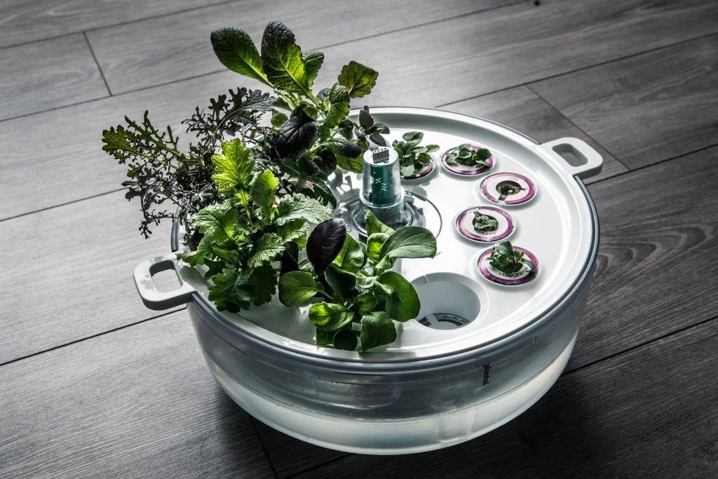 Plantui PreGrow Tray 03