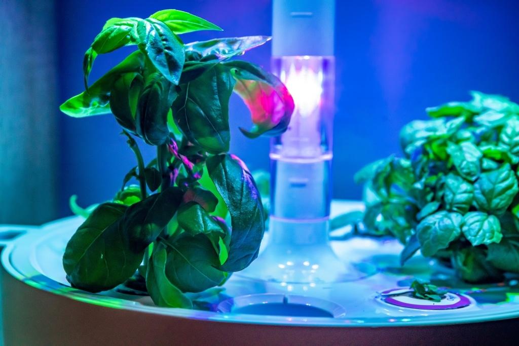 Plantui Smart Garden Plants Overview 02