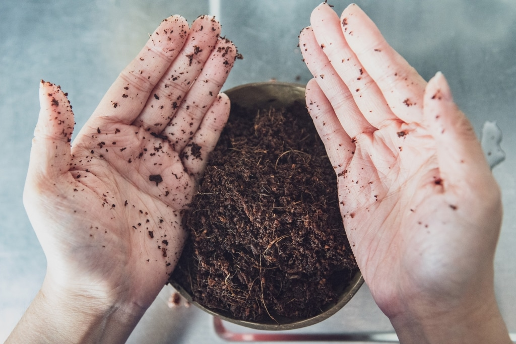 Grow Grow Nut Kokosziegel 04